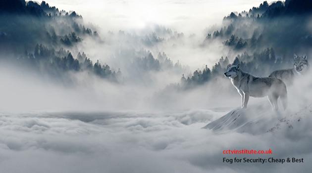 Fog security